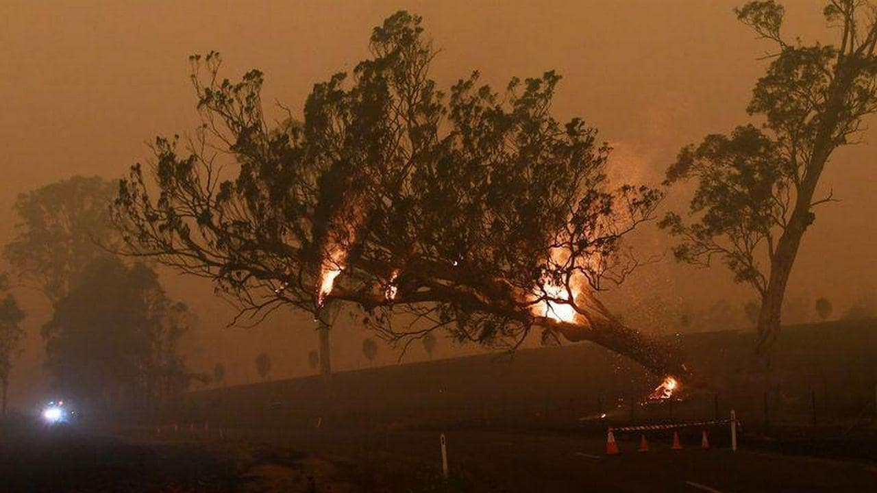 Thunderstorms, heavy rain along Australia's east coast help douse bushfires, but cause road closures, flash foods in several areas - Firstpost