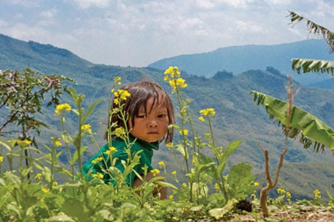 Uneasy peace in the Naga Hills
