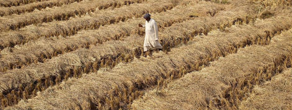 Farm loan waivers: A fresh round of economic crisis is in the making with populism taking lead in Asia's third-largest economy