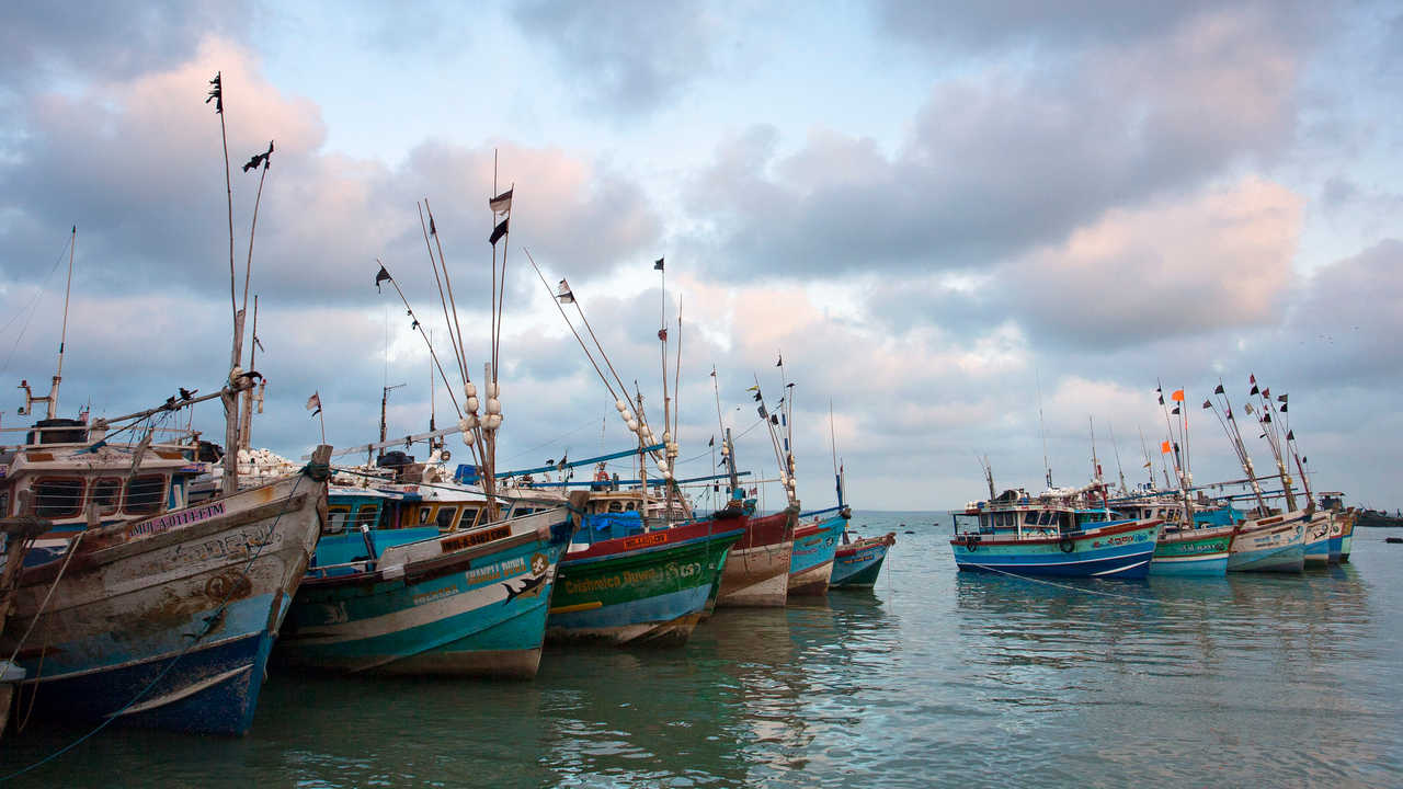 The ocean could be providing six times more food with a few reforms, scientists believe