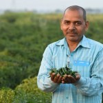 From improving yield to generating steady income, technology is changing the game for small farmers in UP and Jharkhand