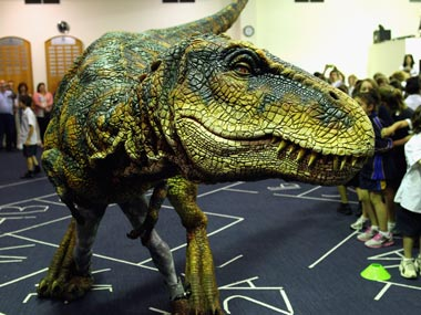 Last African dinosaurs remains discovered in Morocco mine, says scientists