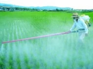 Budget 2012: Big gains for fertiliser cos but investors unimpressed