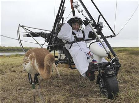 CORRECTED - Russia's Vladimir Putin admits wildlife stunts are staged