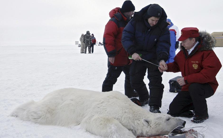 Images: Putin's 'daredevil' stunts which were all staged ...
