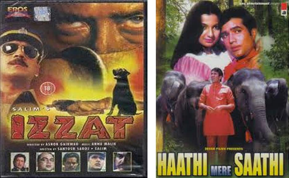 Izzat (L)The elephant (Ramu) plays the lead role in the superhit film, Haathi Mere Saathi and  in the climax he even  sacrifices his life so that his master can be reunited with his family.