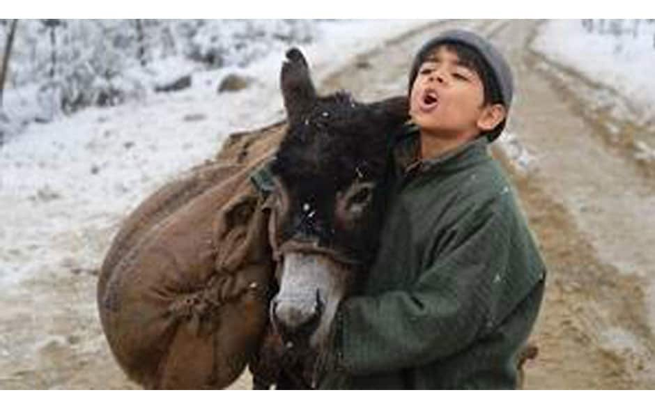 Tahaan is the story of a little boy's journey  to get back his pet donkey Birbal who is taken away by  money leader because his family could not pay a loan.