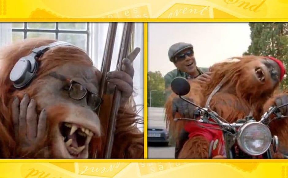Images: YPD 2s orangutan and other Bollywood animal heroes