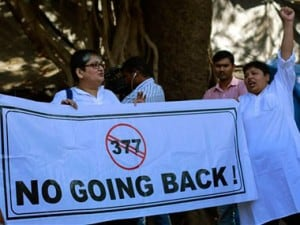 SC verdict on 377 completely ignored our arguments: Activists