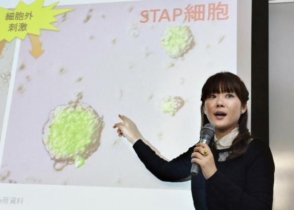 Japan researcher agrees to withdraw disputed stem cell paper