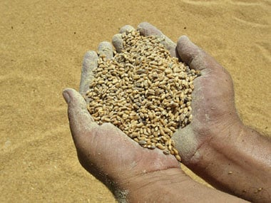 Global food prices decline to four-year low, finds FAO