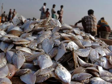 Sri Lankas navy arrests 12 Tamil Nadu fishermen for fishing in countrys territorial waters, impounds two boats