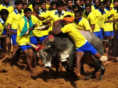 Representational image of Jallikattu. AFP