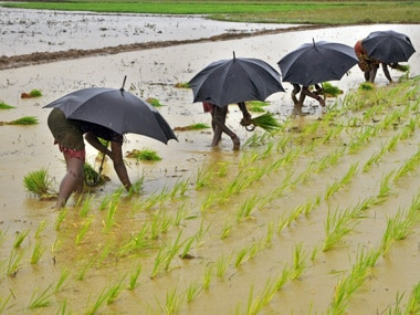 Mking the right monsoon prediction. Reuters