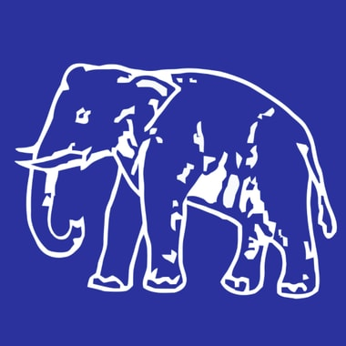 BSP party logo/ Screenshot