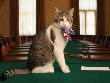 Palmerston. Twitter - British Consulate NY @UKinNewYork