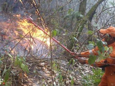The fire in Uttarakhand. Image courtesy: NDRF