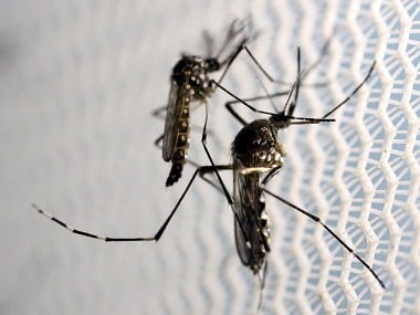 16 in Manipur village succumb to mosquito-borne diseases along the India-Myanmar border
