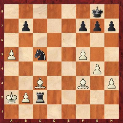 So when he reached the above position as white, what do you think did Anand played here?