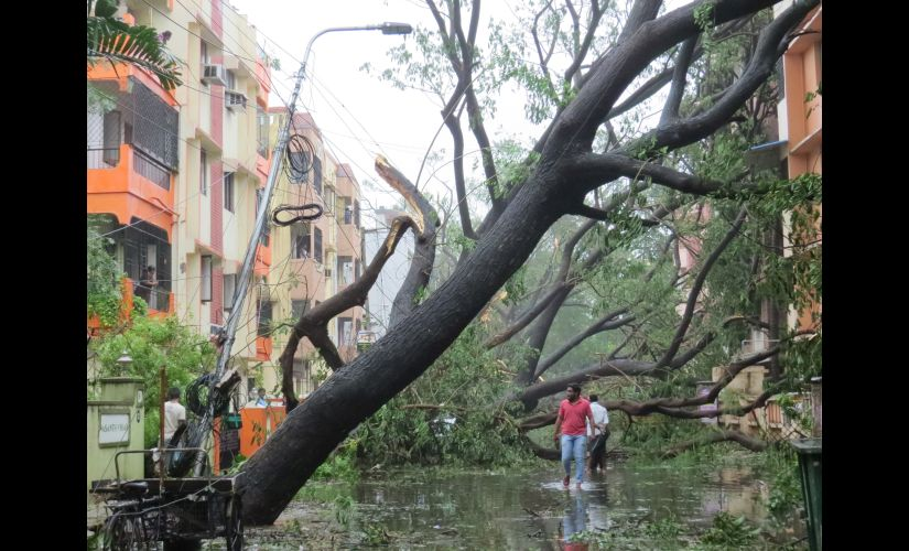 Cyclone Vardah brings Chennais vulnerabilities to the fore, reminds residents of 2015 floods