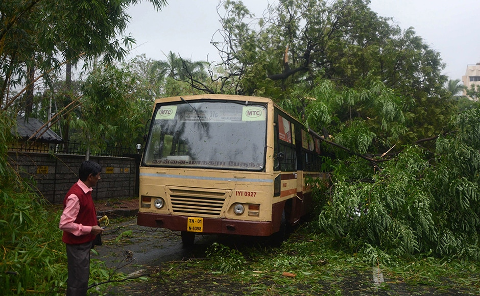 A pedestrian looks at a tree that fell on a bus in Chennai, after Cyclone Vardah crossed the Indian coast in the southern state of Tamil Nadu. AFP