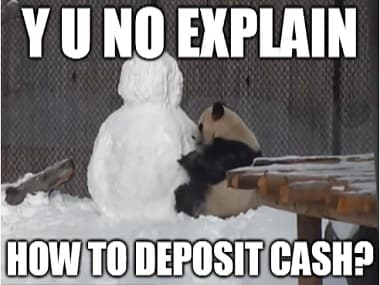 Panda and snowman discuss demonetisation: What Toronto Zoo's finest makes of it all