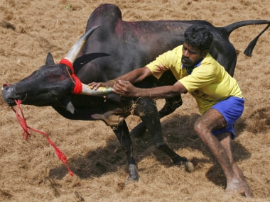Jallikattu protests: Tamil identity has been a deep fault-line for at least half a century