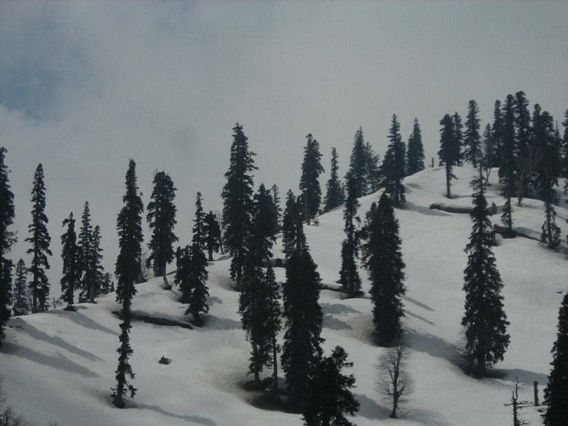 On reaching the top at Khilanmarg after the gondola ride