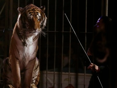 PETA India backs Centres proposal to ban animals in circuses, submits petition signed by over 8,000 people
