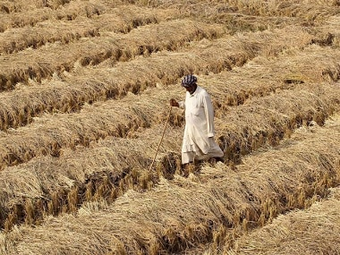 MP farmers unrest: State constitutes commission to regulate crop cost, marketing