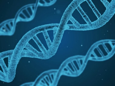 Indian scientists suspect genetic diseases could be linked to the tradition of marrying within caste - Firstpost
