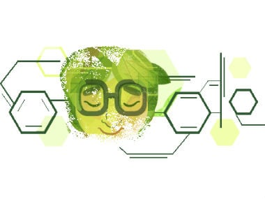Google Doodle celebrates Dr Asima Chatterjee's birth anniversary. Google.