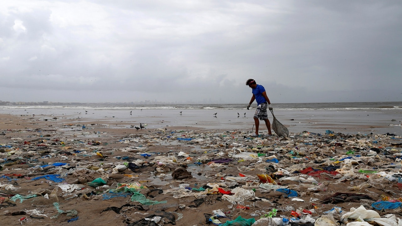 A volunteer collects garbage as he cleans a beach in Mumbai, India, August 14, 2016. REUTERS/Danish Siddiqui - S1AETVJDGUAE