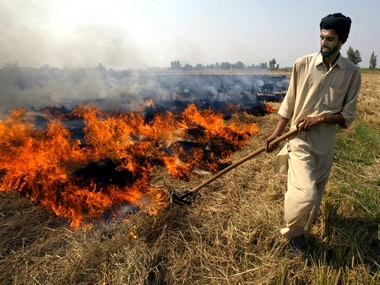 NGT takes stern view of crop burning, but farmers in Punjab and Haryana say they have little choice