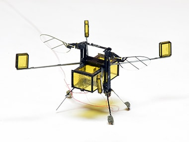 Harvard researchers create RoboBee, a bee-inspired robot that can fly through the air and swim through water
