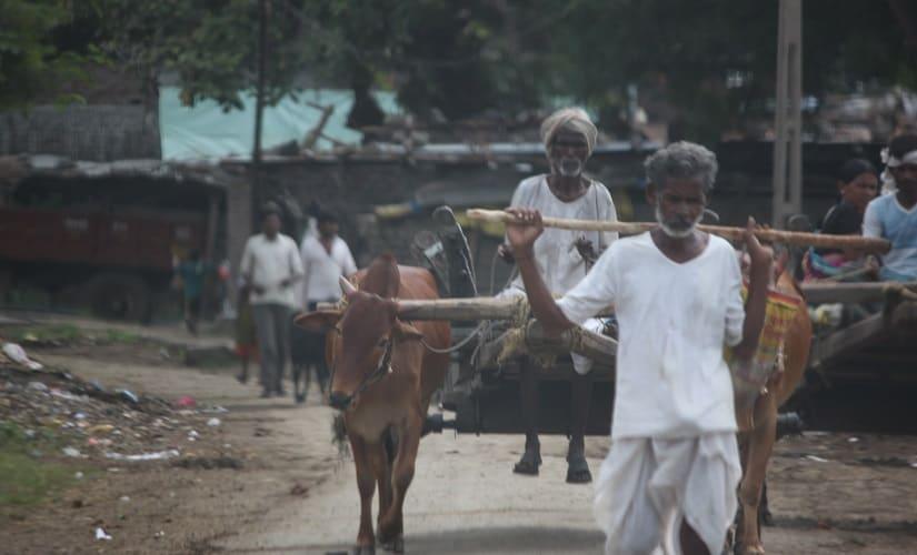 A farmer in Sindhursani village, Arni taluk. Image courtesy Karthikeyan Hemalatha.