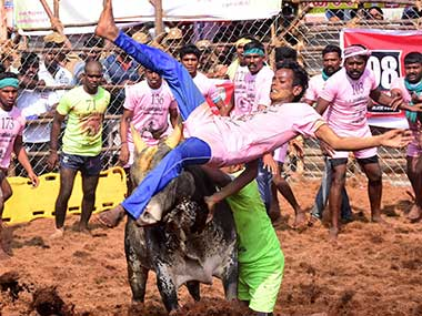 Upto 76 injured while participating in Jallikattu within first three days of festival in Tamil Nadu