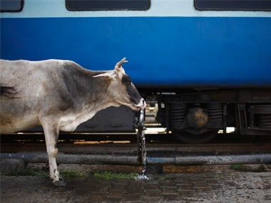 Railways bio-toilet project deeply flawed, need 3,350 truckloads of cow dung at Rs 42 cr, reveals CAG report