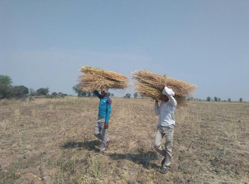 किसान1 (1)