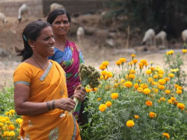 International Women's Day: Patriarchy, market-driven economy undermine crucial role of women in Indian agriculture