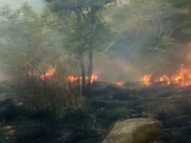 File image of the Theni forest fire. News18