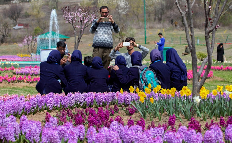 The sea of tulips also prompts people to come and take selfies and photos. There are forty eight varieties of different hues in the garden, presenting a mesmerising spectacle to the visitors. Firstpost/Sameer Mushtaq