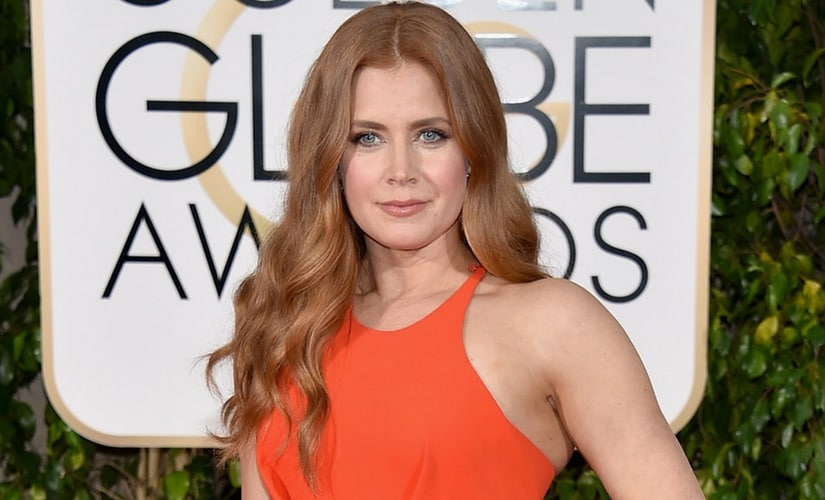 Amy Adams/Image from Twitter.