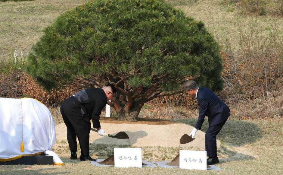 Kim, and Moon planted a pine tree near the military demarcation line at the border village of Panmunjom in the Demilitarised Zone. The pine tree dates to 1953, the year the Korean War ended in an armistice. The soil and water were brought from the Koreas' mountains and rivers. AP