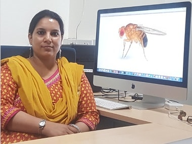 Women in Science: Dr Pinky Kain studies fruit flies to answer how 'taste' is processed by our brain