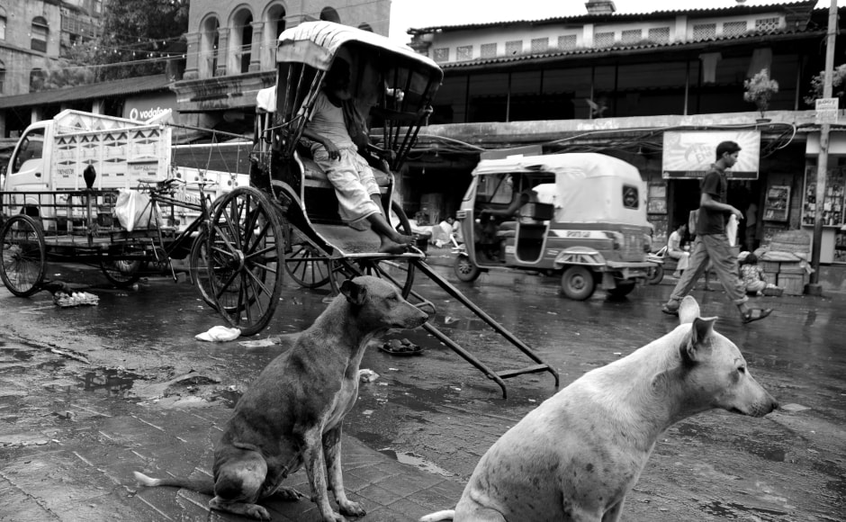 Bimal Roy's Do Bigha Zameen (1953) — which depicted the misery of the lower middle class in a steadily-in-decline Kolkata — portrayed the story of a poor farmer, compelled to leave his village and become a 'tana rickshaw wallah' in the city. Photo by Satwik Paul.