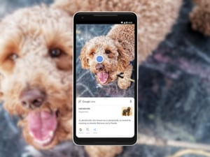Google Lens finally escapes from the clutches of Google Assistant and Photos, arrives as a standalone app on the Play Store