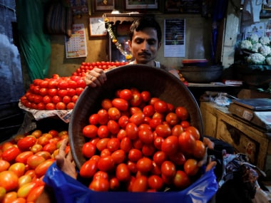 Fuel crisis: Hit by rising transport prices, Maharashtras farmers would rather let the tomato crop rot in the fields