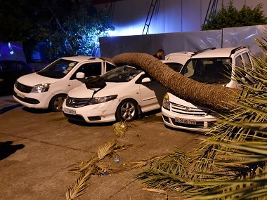 A palm tree trunk fell on cars during dust storm in New Delhi. PTI