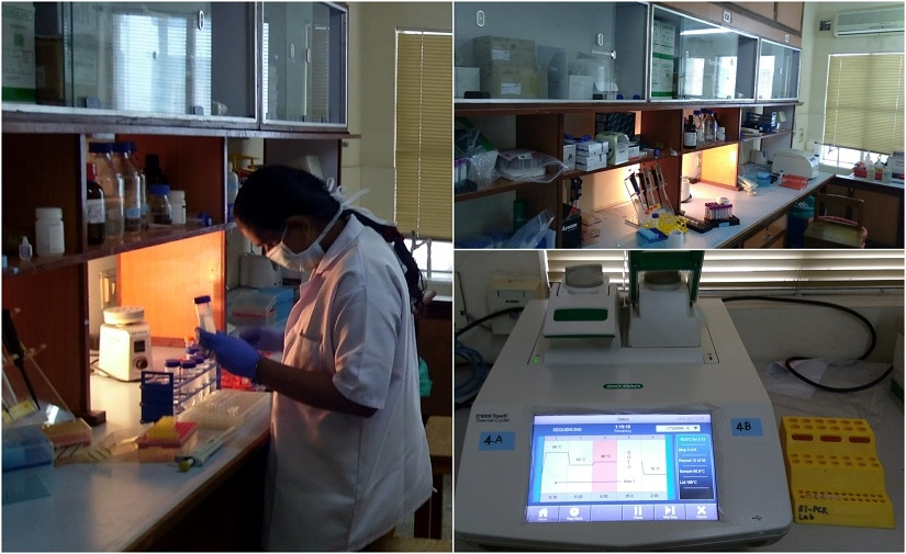 Glimpses of Poonkuzhali's lab